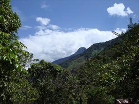 Santuario Nacional Pampa Hermosa