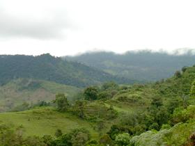 Cordillera de Tarros