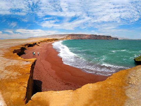 Tour por la Reserva Nacional de Paracas