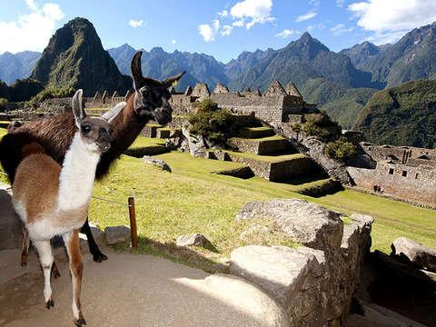 Machu Picchu Conexión Valle Sagrado 2d/1n - Tren Expedition