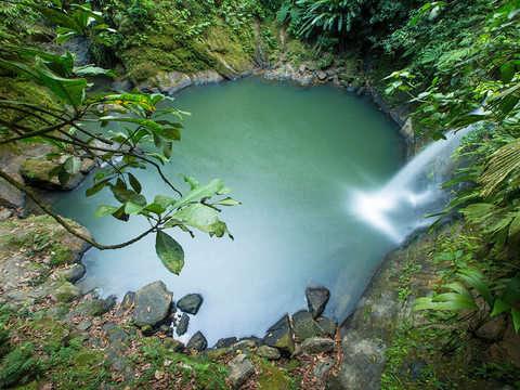 Tour a Catarata de Pishurayacu
